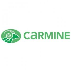 carmine serrures cylindres serrurier